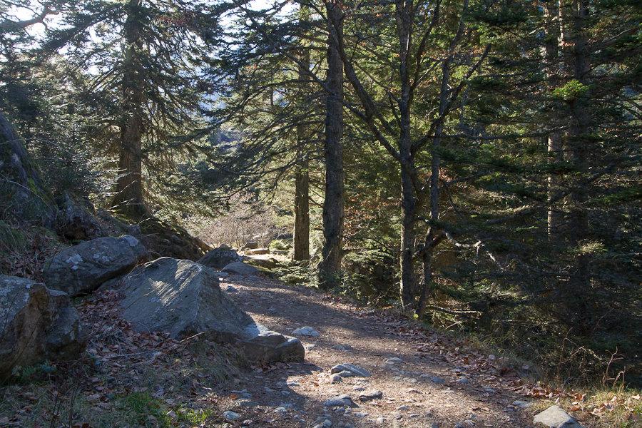 randonnee-lac-de-gaube-006