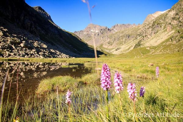 rando-lac-cestrede-hautes-pyrenees-3522